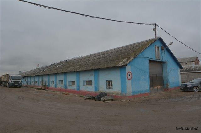Складское помещение 290 кв.м., Пушкинский район