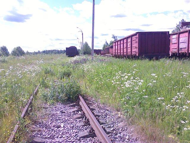 Земельный участок 82580 кв.м., Тосненский район ЛО