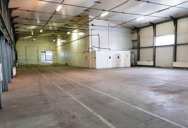 Производственное помещение 1100 кв.м., Приморский район