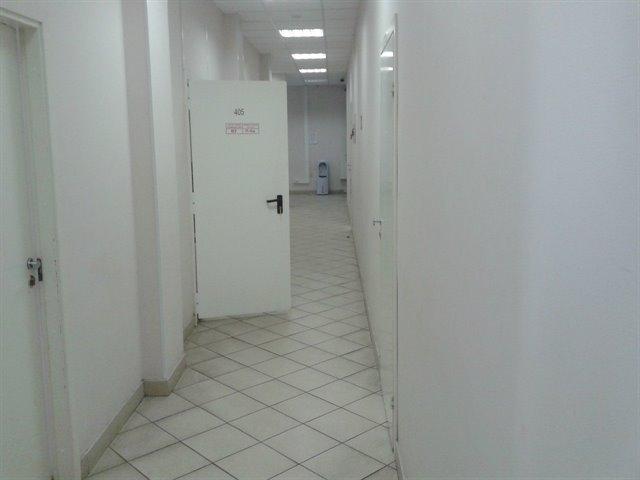 Офисное помещение 26 кв.м., Московский район